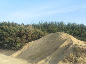 dune spiaggia santa maria del focallo