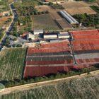 panoramica campo di essiccazione al sole dei pomodori secchi