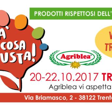 Agriblea Pomodori Secchi - fà la cosa giusta - TRENTO