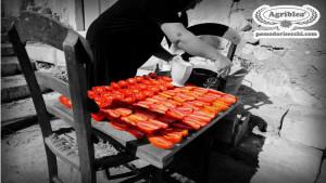 i-pomodori-tagliati-vengono-salati-con-il-sale-per-essere-messi-ad-essiccare-al-sole