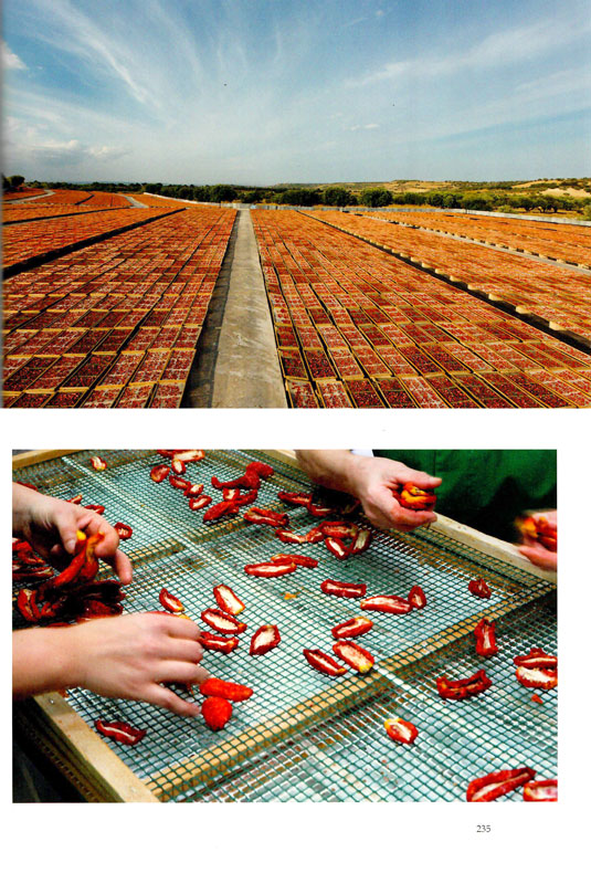 I Pomodori Secchi Bio Agriblea - Libro Yuko Okuma