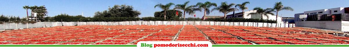BLOG - Pomodori Secchi Bio Agriblea