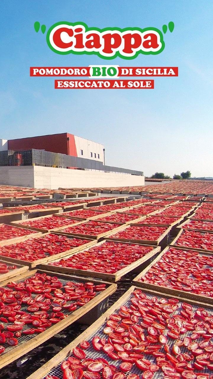 Ciappa, pomodoro bio di Sicilia essiccato al sole