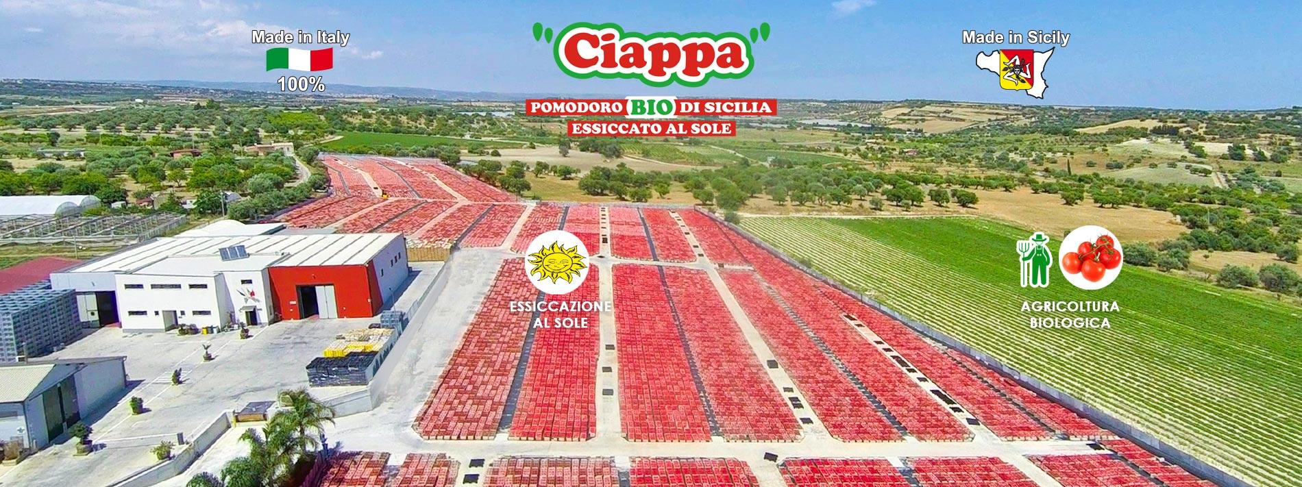 pomodoro bio di Sicilia essiccato al Sole