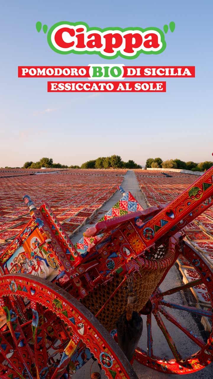 Ciappa (pomodoro bio di Sicilia essiccato al sole) Agriblea