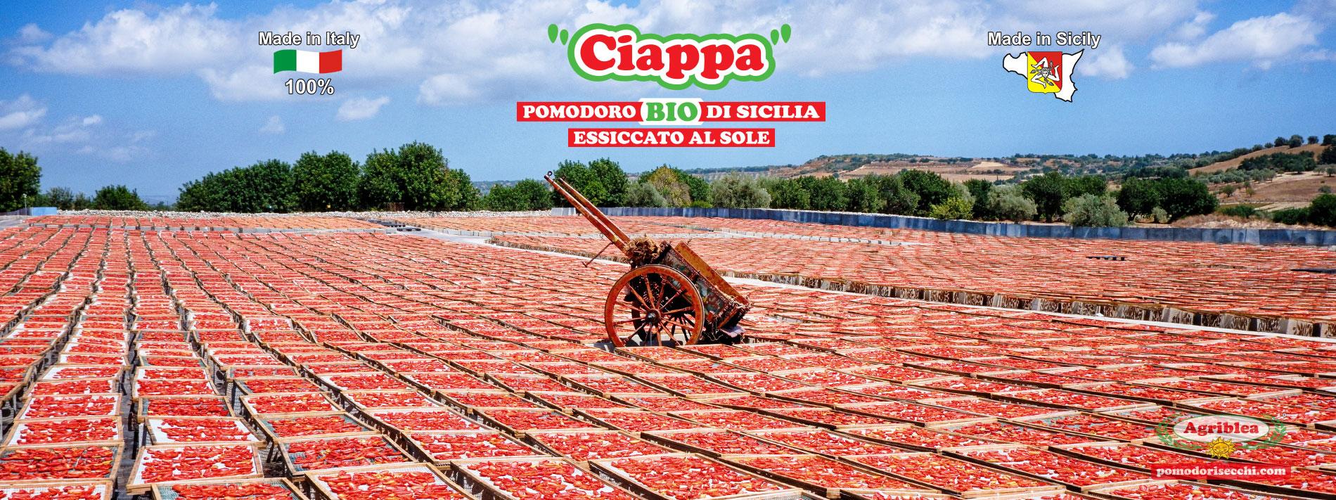 pomodori secchi siciliani bio agriblea