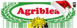 Scopri i pomodori secchi Agriblea