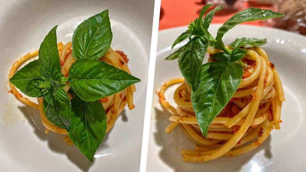 Spaghetti aglio olio peperoncino e Capuliato Bio Agriblea